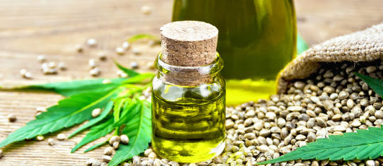 Vertus de l'huile de chanvre